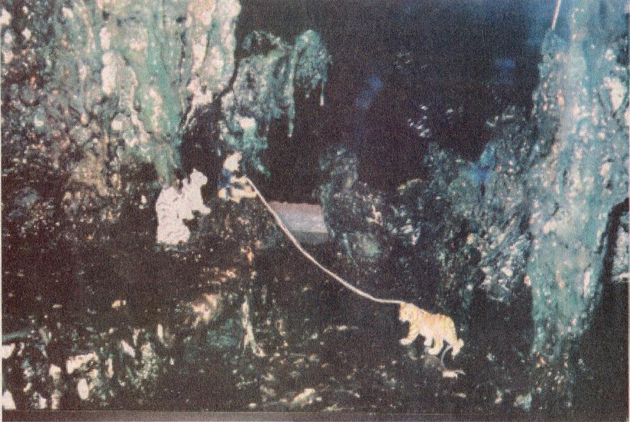 義雲高大師作品--高士圖局部- 從任一局部都表現出超越自然天成,意境超遠。