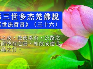 第三世多杰羌佛說《世法哲言》(三十六)