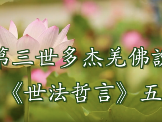(視頻) 第三世多杰羌佛說《世法哲言》五