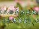 (視頻) 第三世多杰羌佛說《世法哲言》七